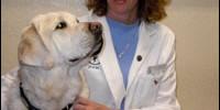 Our Canine Rehabilitation Team